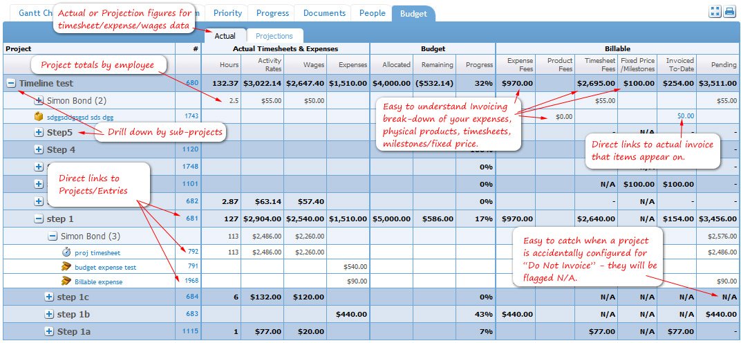 Project Budget Tab - Click to Enlarge